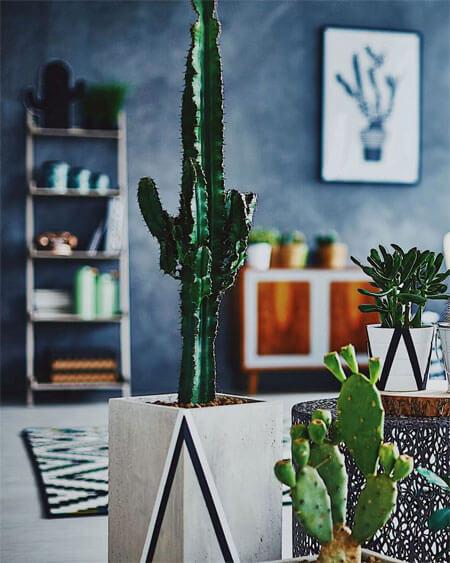 4 Ways to Create a Stress-Free Home
