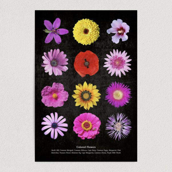"""Colored Flowers Art Print Poster 12"""" x 18"""" Wall Art GC3002"""
