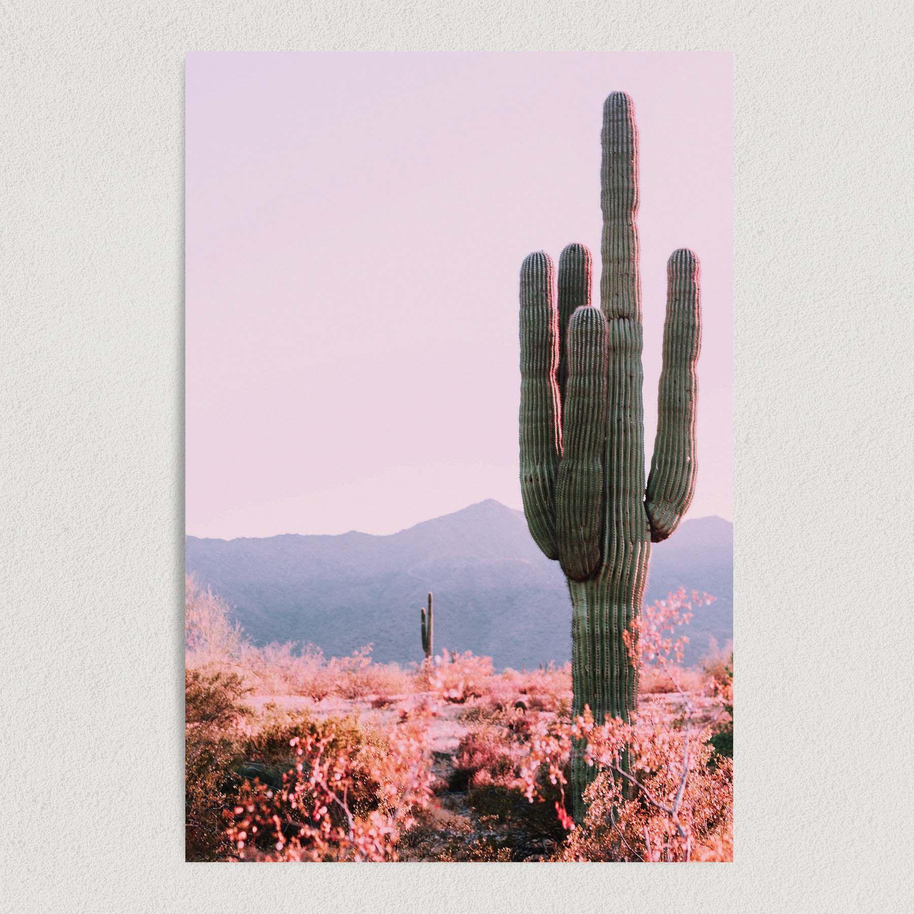 Desert Cactus Art Print Poster 12″ x 18″ Wall Art NUS1209