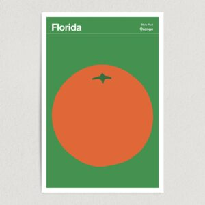 "Florida State Fruit Orange Illustration Art Print Poster 12"" x 18"" Wall Art T2134"