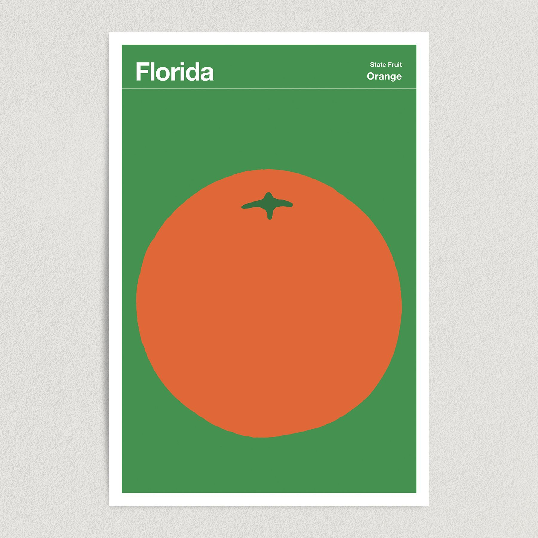 Florida State Fruit Orange Illustration Art Print Poster 12″ x 18″ Wall Art T2134