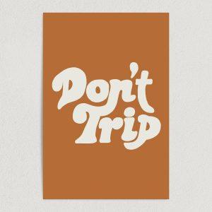 """Don't Trip Art Print Poster 12"""" x 18"""" Wall Art V2512"""
