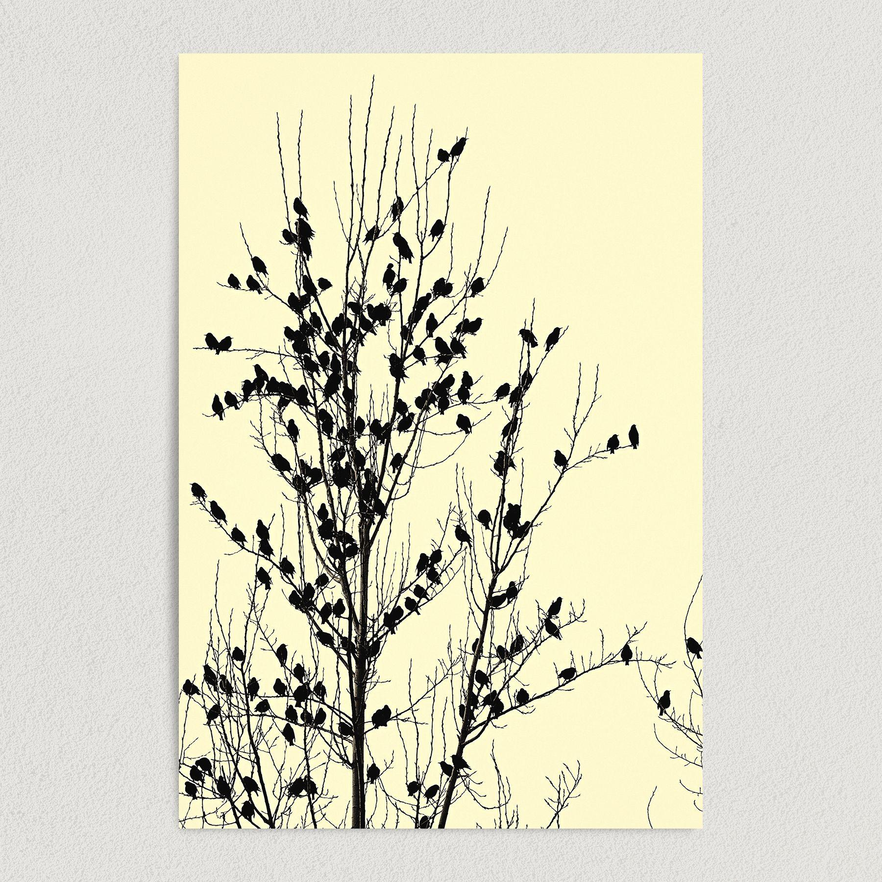 Crows Gathered On A Tree Ominous Art Print Poster N1010