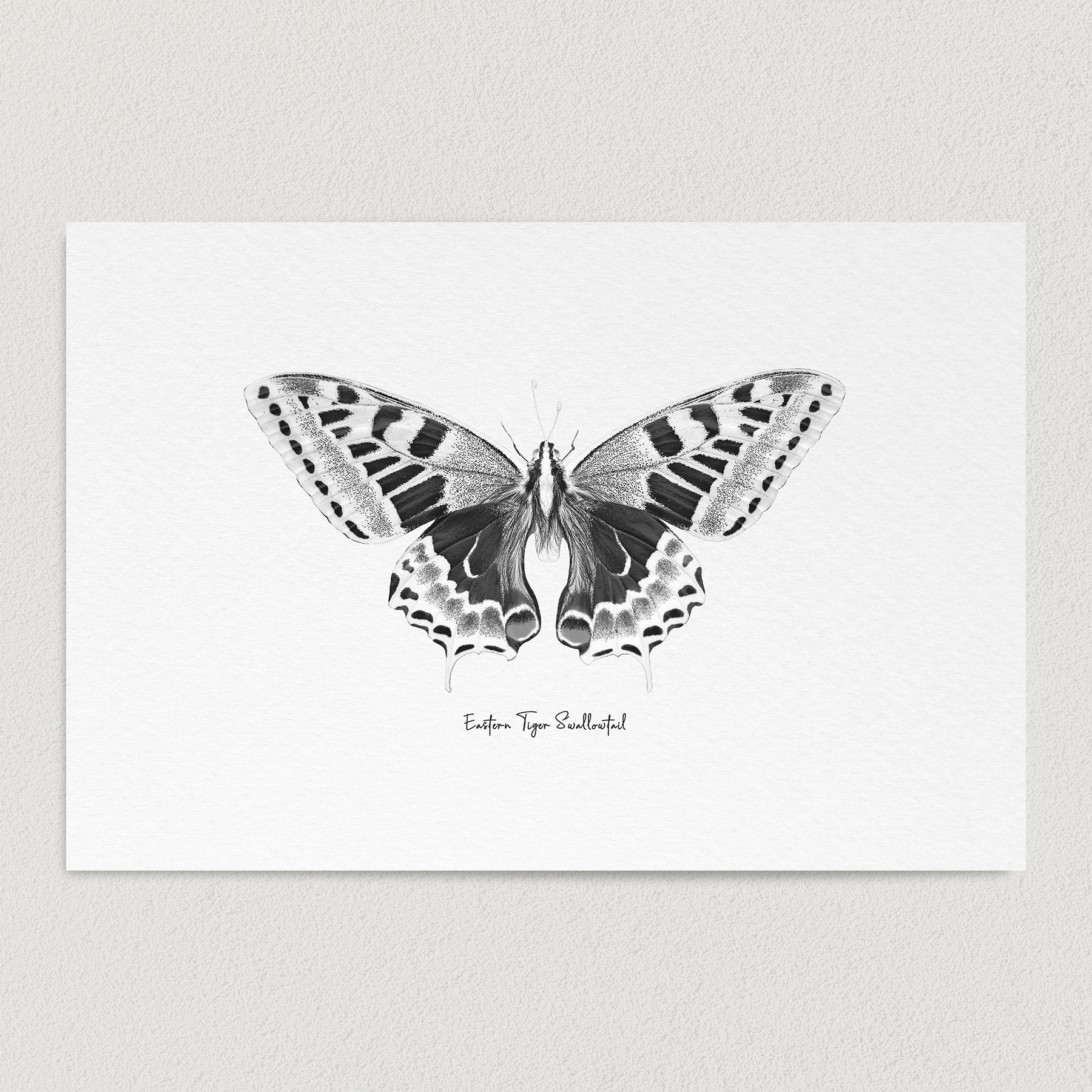 Eastern Tiger Swallowtail Butterfly Sketch Art Print Poster 12″ x 18″ Wall Art N1003