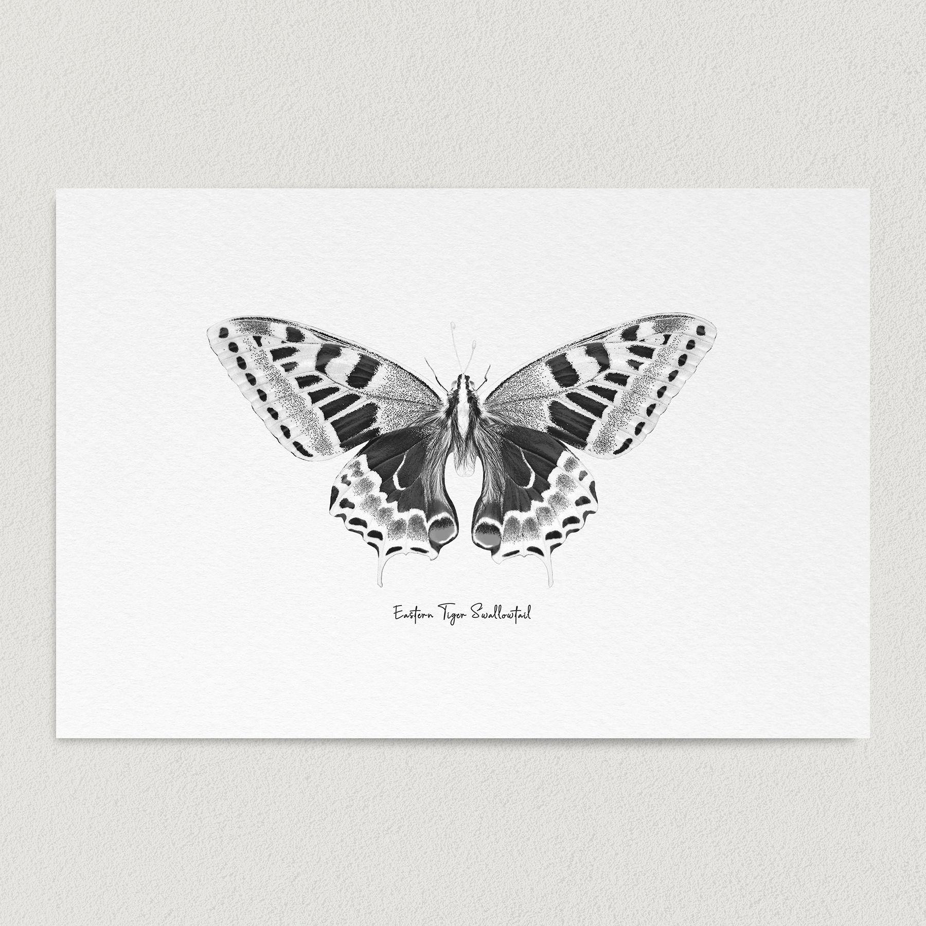 Eastern Tiger Swallowtail Butterfly Sketch Art Print Poster 12″ x 18″ Wall Art N1003