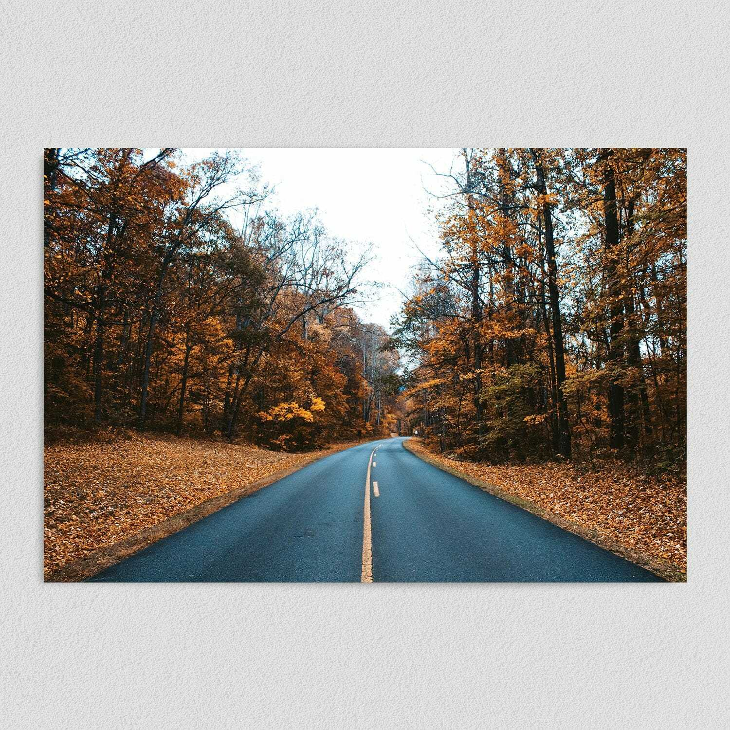 Journey Down a Country Road Art Print Poster 12″ x 18″ Wall Art NA1040