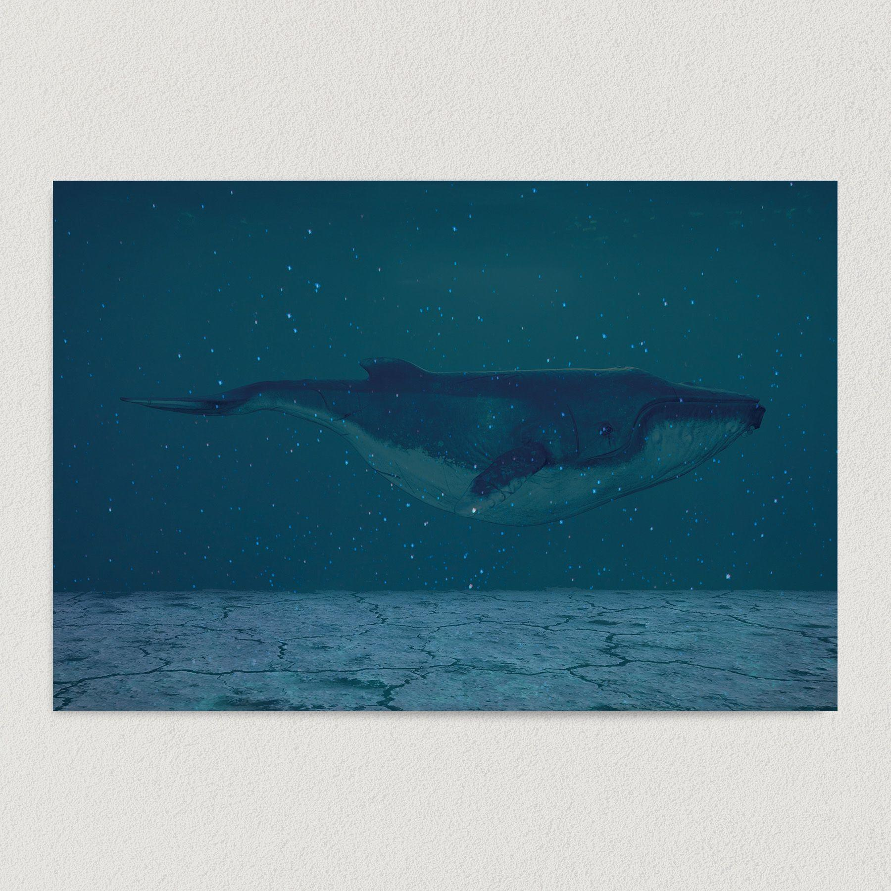 Multidimensional Whale Under Space Water Art Print Poster 12″ x 18″ Wall Art AA1003